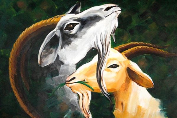 Goat Zodiac Sign - Year of Goat Traits with Horoscope Meaning & Personality